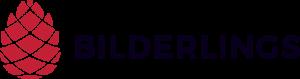 bilderlings pay logo